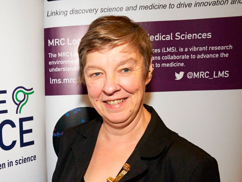 Professor Sally Fincher